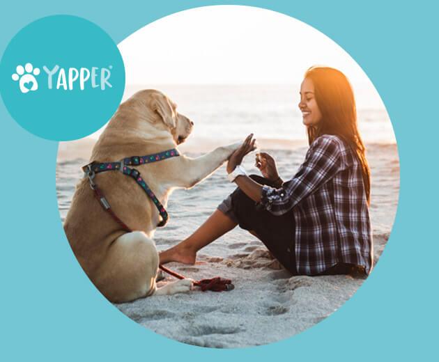 Yapper